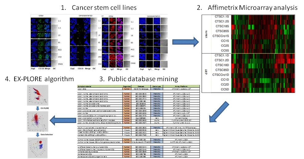 Target_id_Bioinformatics